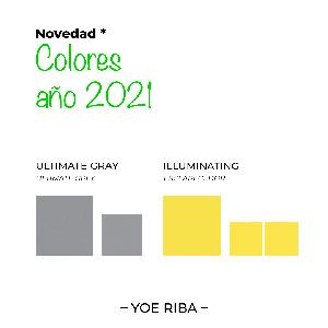 Colores Pantone Amarillo y Gris 2021